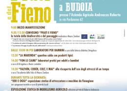 FestaPratiFieno_loc_0515
