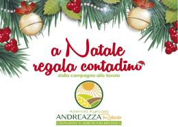 Andreazza_offerta natale_1215mini